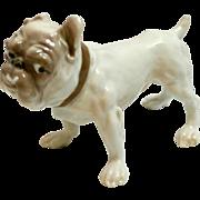 Bulldog Dog Porcelain Figurine Dahl Jensen for Bing & Grondahl 1676 c. 1984