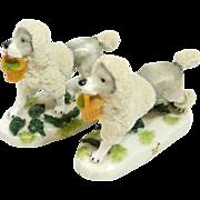 Staffordshire Porcelain Poodle Pair c. 1880's-1920's