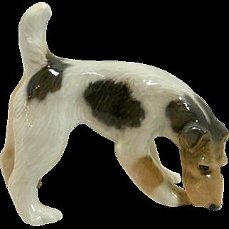 Royal Copenhagen Wire Haired Fox Terrier c. 1928