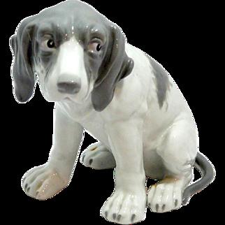 Vintage Heubach Pointer Puppy c.1890-1925