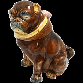 Antique Majolica Pug Dog Tobacco Jar c. late 19th century