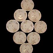 Limoges, France, Theo Haviland Hand-Painted Porcelain Salad and Dessert Plates, Sold as Set of 9