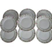 Perfect 12-Piece Set of Wm. Guerin & Co., Limoges, France, Salad Dessert Plates, Circa 1890-1932