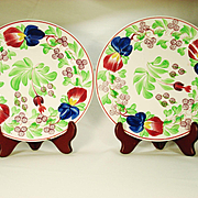 Pair of Earthenware Plates with Free Floral Decoration 1820-1850