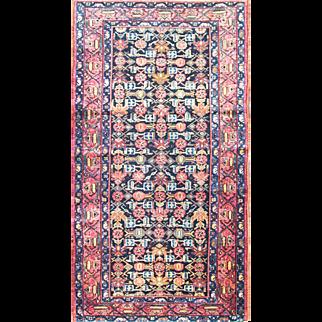 "3'4"" x 6'4"" Amazing Persian Malayer Rug"