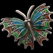 Coin plaque du jour butterfly pin