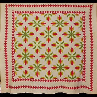 19th c. Quilt ~Applique Tulips Sawtooth border A+++++