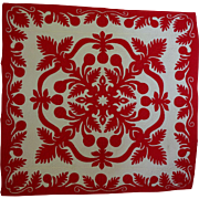 Hawaiian Quilt - Red and White and gorgeous