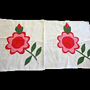 2 Quilt Blocks 1800's Applique Flowers