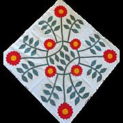 1800's Applique Quilt Block- huge