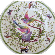 Bird plates set of 10 ~ Austria 8-1/2-inches--Charming colorful birds