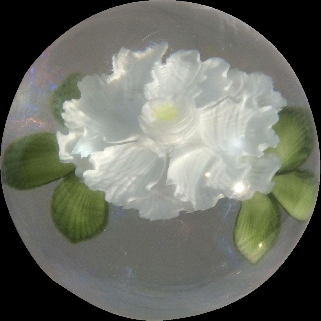 Artist Mayauel Ward Studio Art Glass Lily Pad Flower Paper Weight