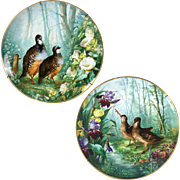 """1876-1886 Pair of 15.55"""" large Limoges France Tray/ Wall Plaque with hand-painted birds and flowers"""
