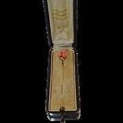 Boxed Victorian 14K Italian Coral Stick Pin