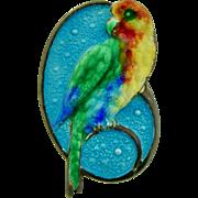 Vibrant Enamel & Sterling Silver Parrot Pin Brooch