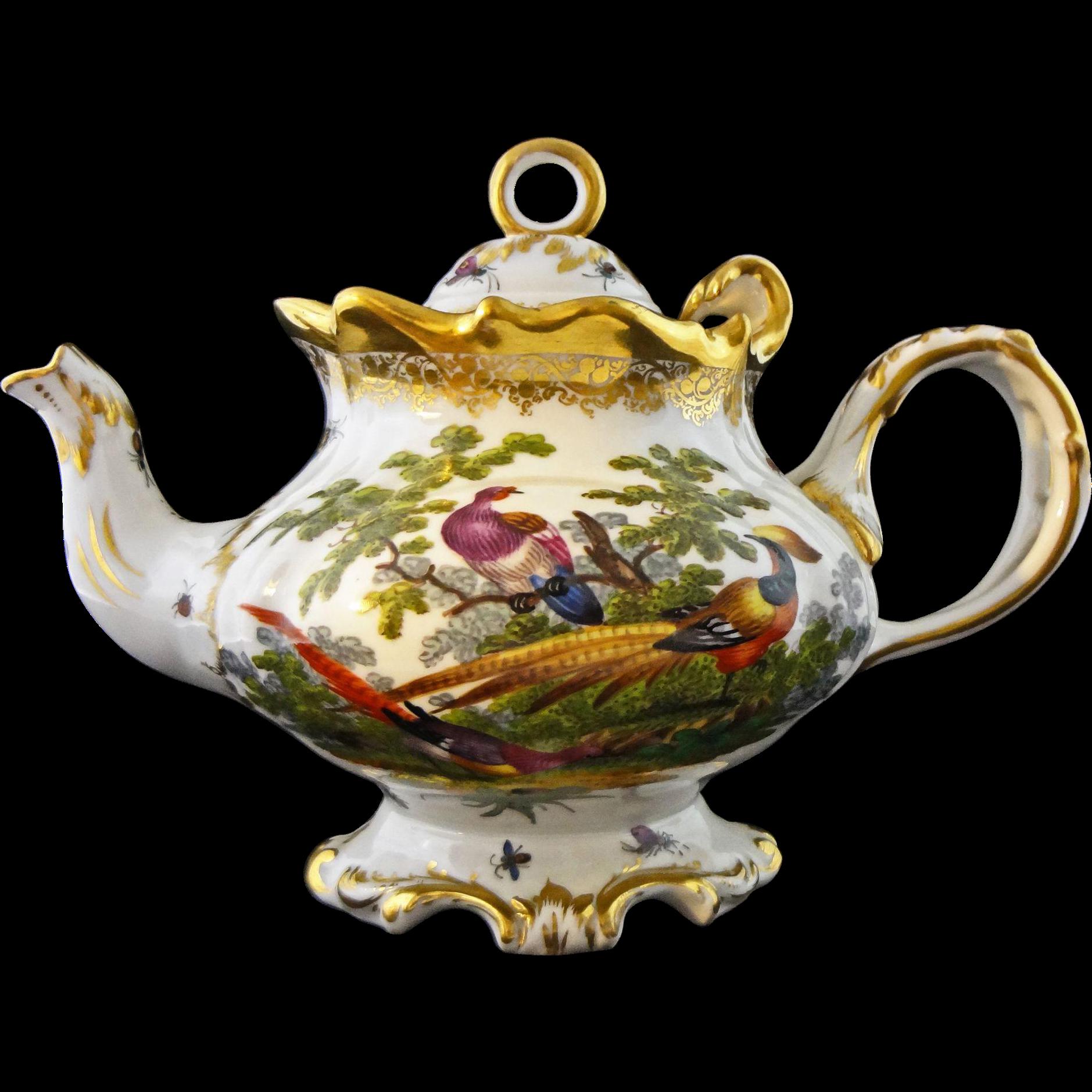 Rococo Style Fancy Porcelain Teapot Hand Painted Pheasant