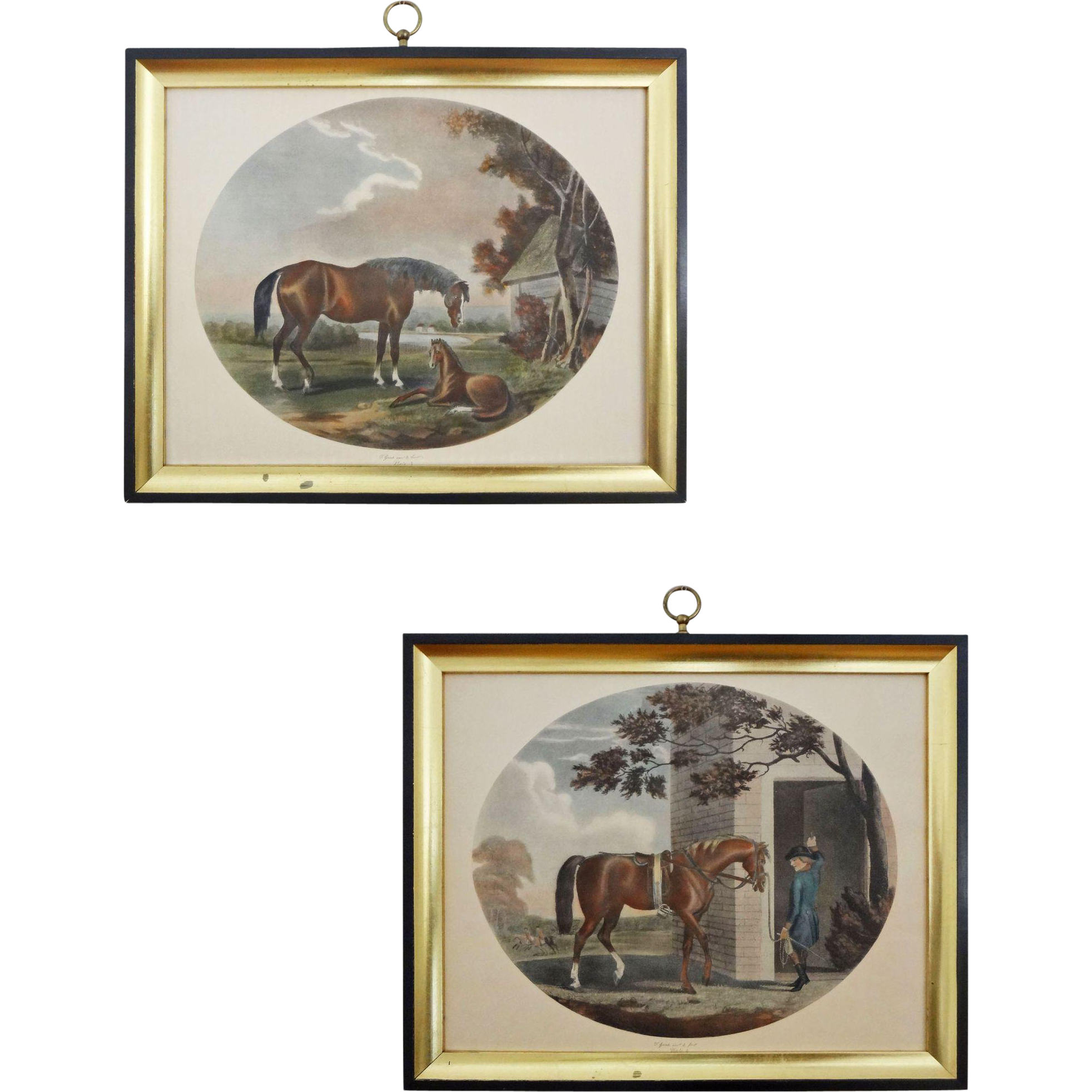 Pair English Sporting Etchings after Thomas Gooch The Life and Death of a Race Horse