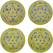 Chinese Famille Jaune Set 4 Large Porcelain Plates Shou, Bats, Floral, Scrolls, Yellow
