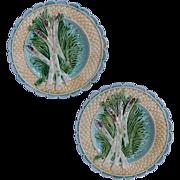 Pair French Majolica Asparagus Plates Salins-les-Bains - c. 19th/20th Century, France