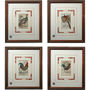 Set 4 Copper Engravings Game / Fowl Birds, William Home Lizars - 19th Century, Great Britain