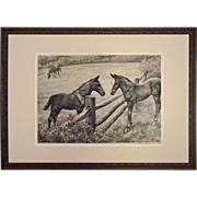 Etching Horses Pencil Signed C. W. Anderson Ed. 250 - c. 1948, USA