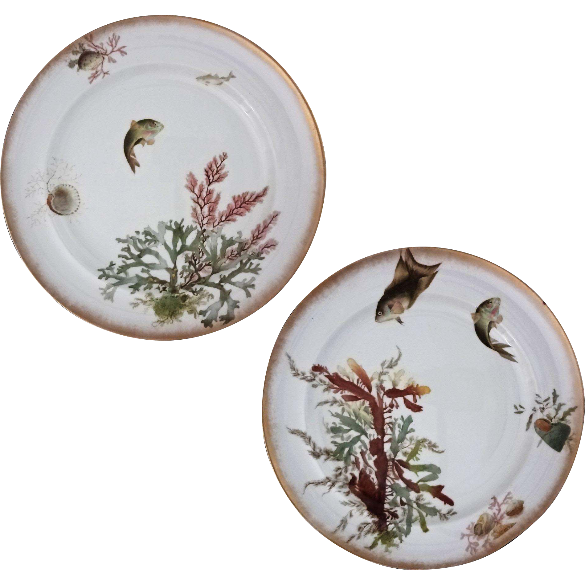 Pair George Jones Fish Seaweed Sea Shell Plates - c. 19th Century, England