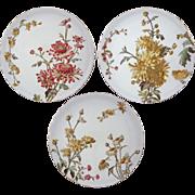 Set 3 George Jones Chrysanthemum Plates English Registry Mark - 1885 Registry Date, England