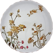 George Jones Chrysanthemum Plate English Registry Mark - 1885 Registry Date, England