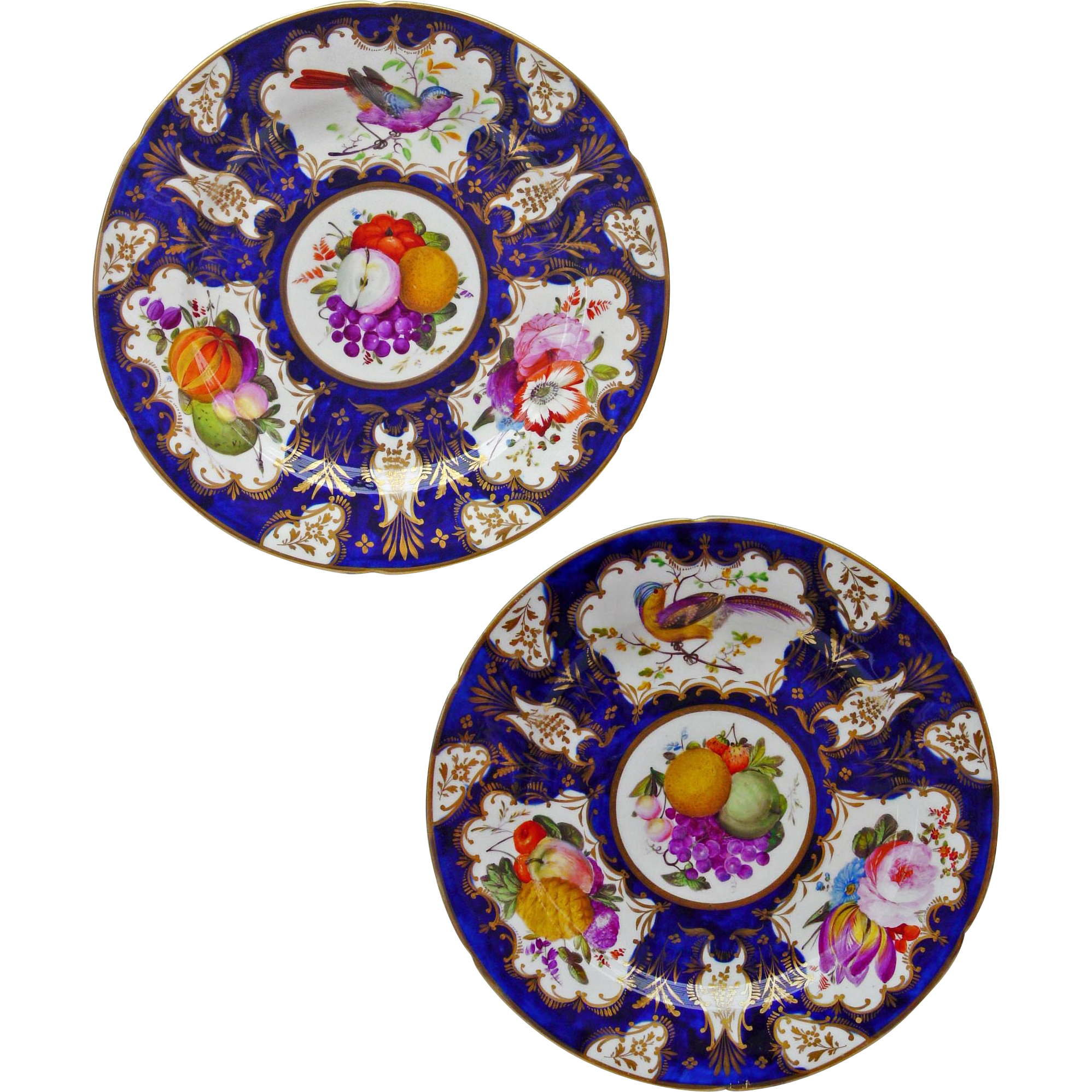 Pair Antique Coalport Cobalt Gilt Bird Fruits Flowers Wall Cabinet Plates - circa 1815 to 1825, England