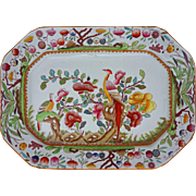 Ashford Bros Asian Birds Large Platter Transferware Multicolor Pattern C221 - 19th Century, England