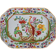English Ashford Bros Asian Birds Medium Platter Transferware Multicolor Pattern C221 - 19th Century, England