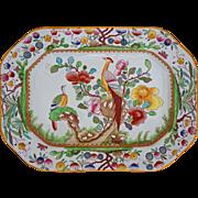 English Ashford Bros Asian Birds Medium Platter Transferware Multicolor Pattern C221 - 19th Century, England