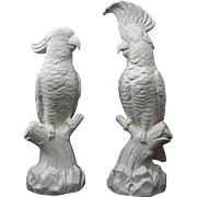 Pair Minton Large White Cockatoos Mantle Marked Staffordshire Salt Glaze -  circa 1912 to 1950, England