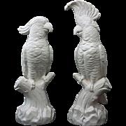 Pair Minton Large White Cockatoos Mantle Marked Staffordshire Salt Glaze -  circa 1912 to 1950, England
