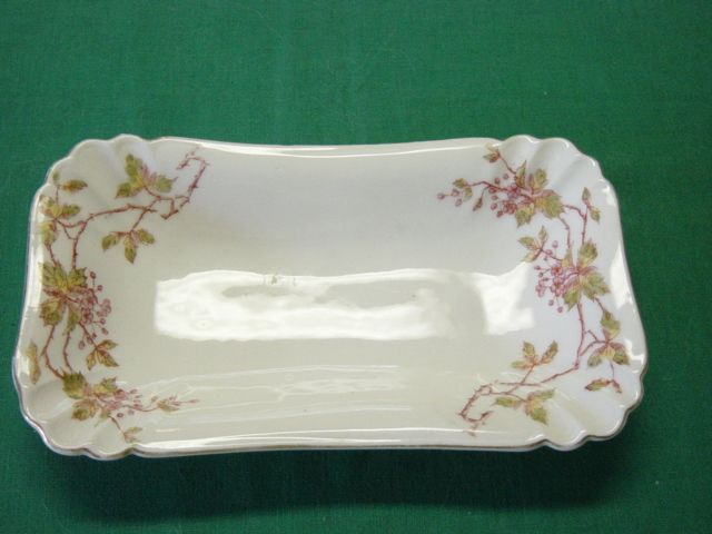 Vintage LS&S Carlsbad Austria Celery Platter