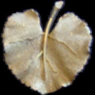BSK Gold Leaf Brooch
