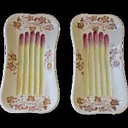 PR Hand painted Asparagus Plates