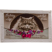 Delightful Birthday Postcard with Cat