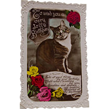 Adorable Birthday Real Photo Postcard with Cat