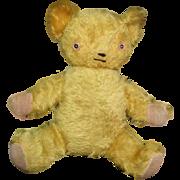 Adorable mohair Teddy bear