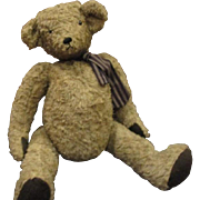 Adorable  Teddy bear 20""