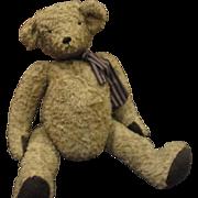 """Adorable  Teddy bear 20"""""""