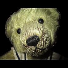Darling mohair Teddy bear/ artist original