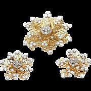 Van Cleef & Arpels set earrings and brooch
