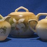 R S Germany Flower Decorated Tea Set