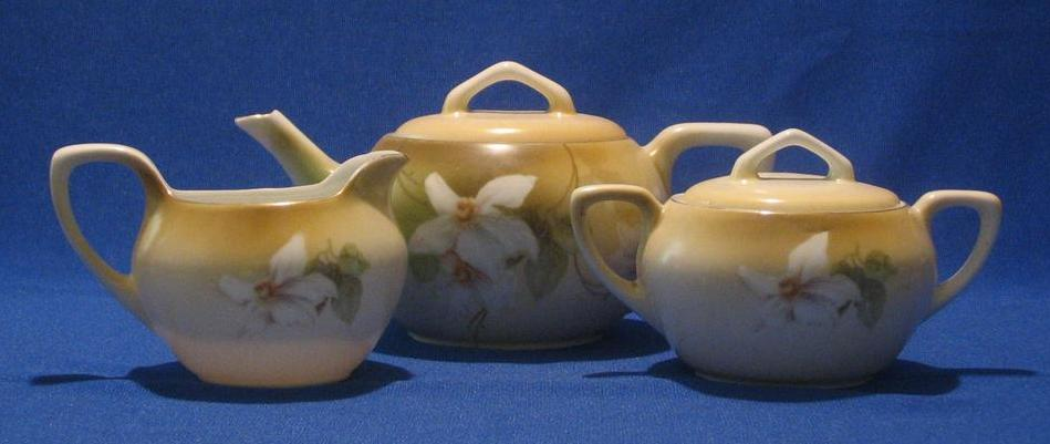 R S Germany Flower Decorated Tea Set