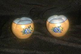 Lovely Lusterware Salt And Pepper Shakers