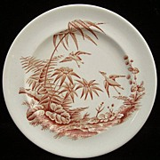 EXOTIC BIRDS Aesthetic Transferware Plate ~ 1875