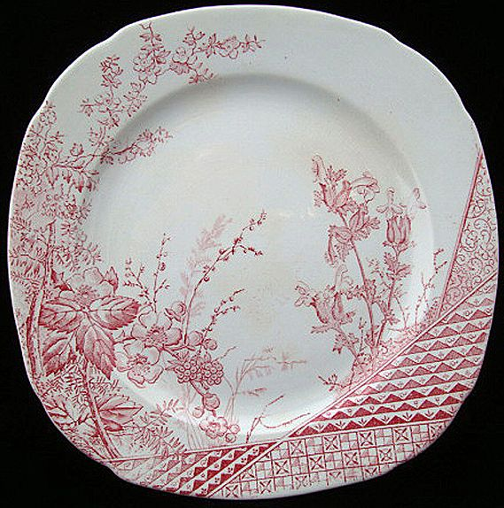 Aesthetic Red Transferware Biscuit Plate ~ RASPBERRY 1885
