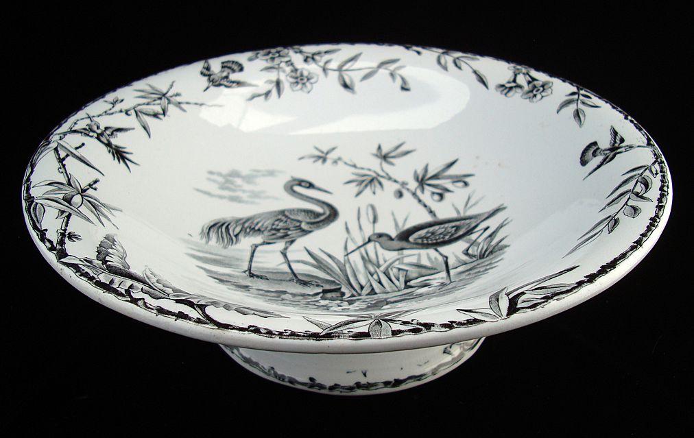 Aesthetic INDUS Comport ~ Exotic BIRDS 1885